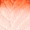 Portaconfetti Flowering