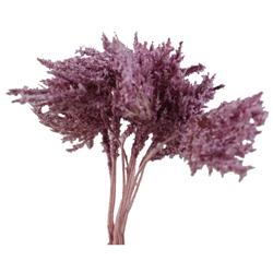 Pick e accessori bomboniere GISOPHILA Violetto (144 pz)
