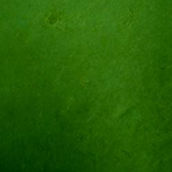 Carta regalo CARTA DI SETA Verde scuro 60x80cm (20 pz)
